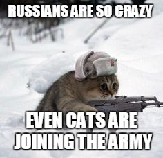 russian cat | RUSSIANS ARE SO CRAZY EVEN CATS ARE JOINING THE ARMY | image tagged in russian cat | made w/ Imgflip meme maker
