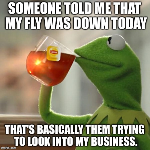 My Fly | SOMEONE TOLD ME THAT MY FLY WAS DOWN TODAY THAT'S BASICALLY THEM TRYING TO LOOK INTO MY BUSINESS. | image tagged in memes,but thats none of my business,kermit the frog,fly,blackhawk down | made w/ Imgflip meme maker