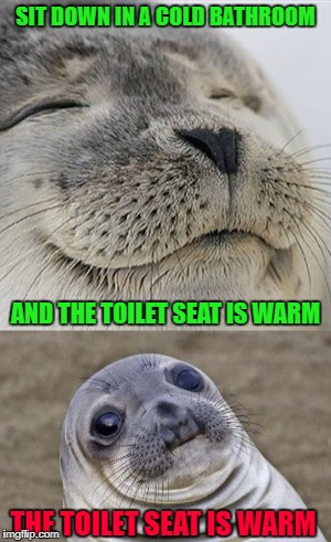 It feels good, but for that brief moment, you can't help but wonder who was on there before you!!! | SIT DOWN IN A COLD BATHROOM AND THE TOILET SEAT IS WARM THE TOILET SEAT IS WARM | image tagged in warm toilet seat,memes,public toilets,funny,toilet humor,risky business | made w/ Imgflip meme maker