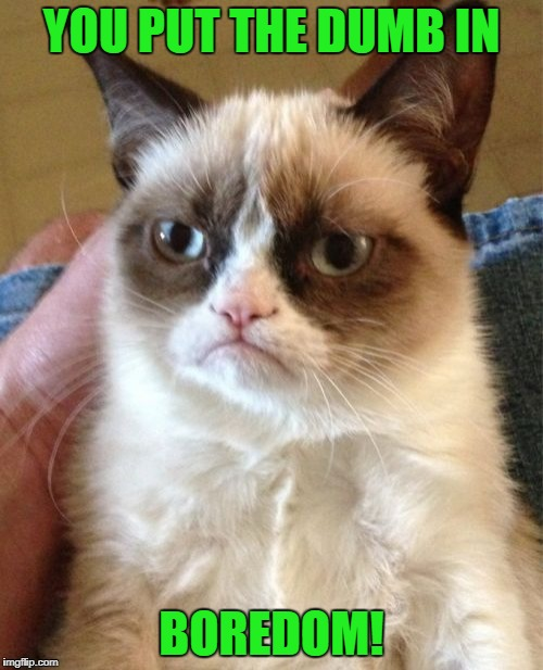 Most dumberer meme that I've ever made. | YOU PUT THE DUMB IN BOREDOM! | image tagged in memes,grumpy cat,dumb,boredom,dumb and dumber | made w/ Imgflip meme maker