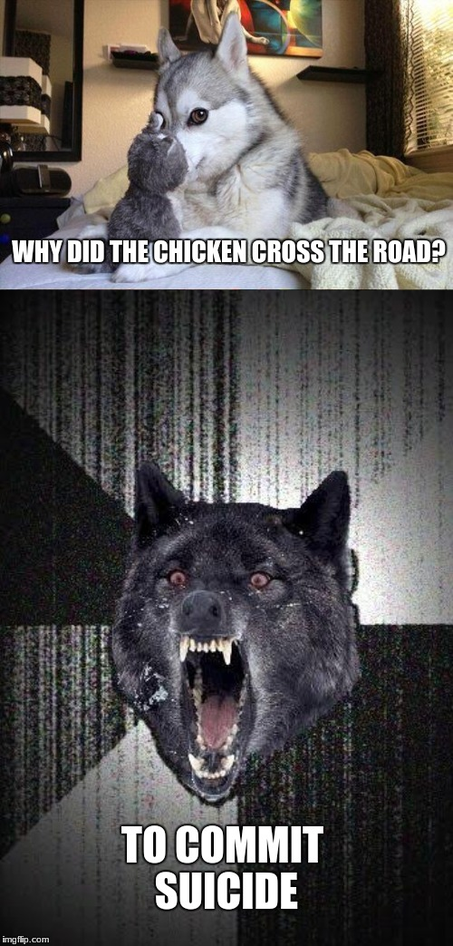 One Messed up chicken | WHY DID THE CHICKEN CROSS THE ROAD? TO COMMIT SUICIDE | image tagged in bad pun dog,insanity wolf,memes | made w/ Imgflip meme maker