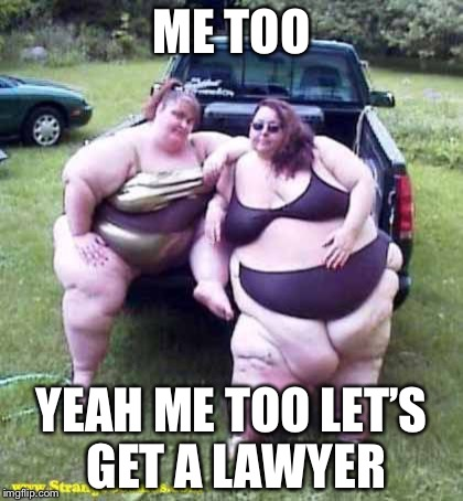 Like who in their right minds would ever... | ME TOO YEAH ME TOO LET'S GET A LAWYER | image tagged in fat girl's on a truck,me too,memes | made w/ Imgflip meme maker