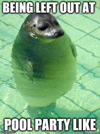 Standing Seal | BEING LEFT OUT AT POOL PARTY LIKE | image tagged in standing seal | made w/ Imgflip meme maker