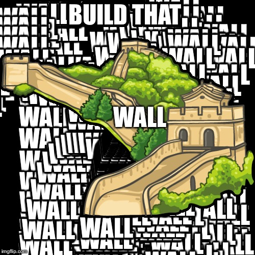 BUILD THAT WALL | image tagged in wall | made w/ Imgflip meme maker