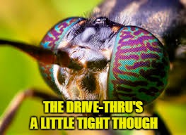 THE DRIVE-THRU'S A LITTLE TIGHT THOUGH | made w/ Imgflip meme maker