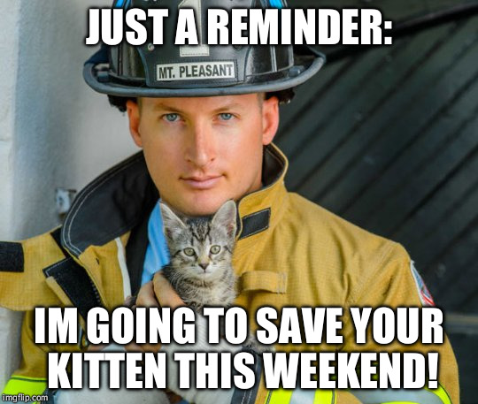 JUST A REMINDER: IM GOING TO SAVE YOUR KITTEN THIS WEEKEND! | image tagged in fireman-kitten | made w/ Imgflip meme maker