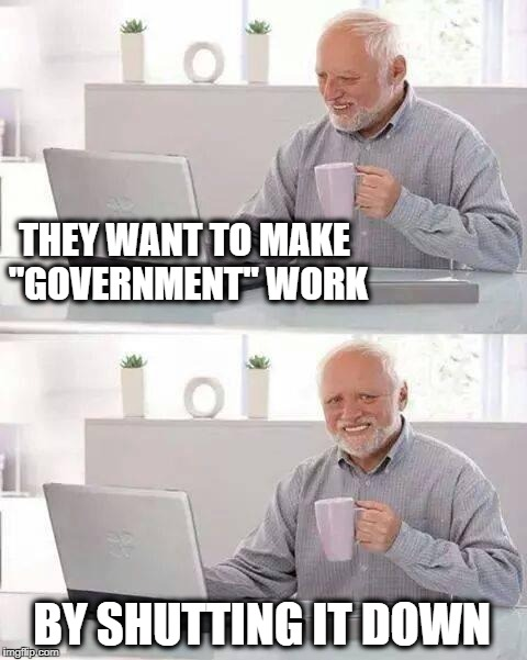 "Hide the Pain Harold Meme | THEY WANT TO MAKE ""GOVERNMENT"" WORK BY SHUTTING IT DOWN 