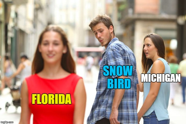 It's that time of year, folks! | FLORIDA SNOW BIRD MICHIGAN | image tagged in memes,distracted boyfriend | made w/ Imgflip meme maker