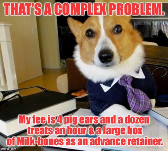 Canine Court of Law | . | image tagged in memes,dog lawyer,fee retainer,pig ears,milk-bones | made w/ Imgflip meme maker