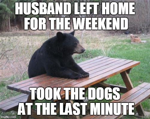 HUSBAND LEFT HOME FOR THE WEEKEND TOOK THE DOGS AT THE LAST MINUTE | made w/ Imgflip meme maker