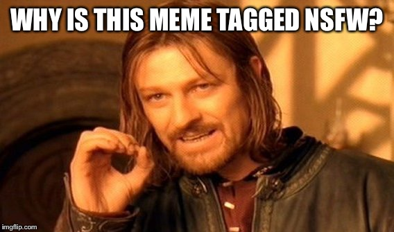 One Does Not Simply Meme | WHY IS THIS MEME TAGGED NSFW? | image tagged in memes,one does not simply | made w/ Imgflip meme maker