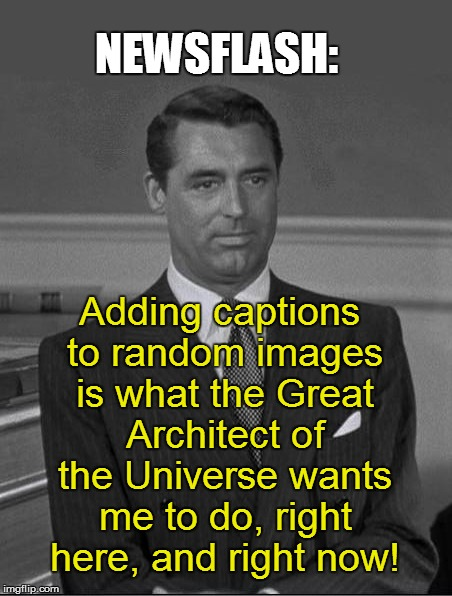 NEWSFLASH: Adding captions to random images is what the Great Architect of the Universe wants me to do, right here, and right now! | made w/ Imgflip meme maker