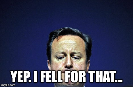 Cameron ashamed | YEP. I FELL FOR THAT... | image tagged in cameron ashamed | made w/ Imgflip meme maker