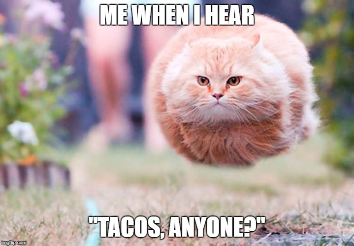 "ME WHEN I HEAR ""TACOS, ANYONE?"" 