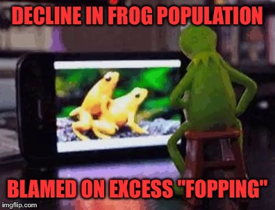 "DECLINE IN FROG POPULATION BLAMED ON EXCESS ""FOPPING"" 