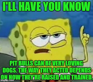 I'll Have You Know Spongebob | I'LL HAVE YOU KNOW PIT BULLS CAN BE VERY LOVING DOGS. THE WAY THEY ACTED DEPENDS ON HOW THEY'RE RAISED AND TRAINED. | image tagged in memes,ill have you know spongebob,dogs,pit bull,spongebob,stereotypes | made w/ Imgflip meme maker