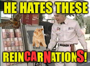 HE HATES THESE REINCARNATIONS! CA N S | made w/ Imgflip meme maker