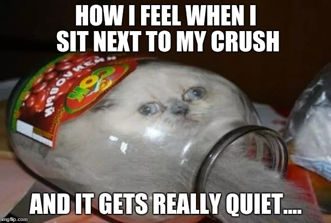 Funny Memes For A Crush : We all know how this feels imgflip
