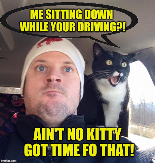 ME SITTING DOWN WHILE YOUR DRIVING?! AIN'T NO KITTY GOT TIME FO THAT! | made w/ Imgflip meme maker