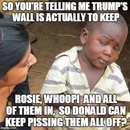 Third World Skeptical Kid Meme | SO YOU'RE TELLING ME TRUMP'S WALL IS ACTUALLY TO KEEP ROSIE, WHOOPI  AND ALL OF THEM IN,  SO DONALD CAN KEEP PISSING THEM ALL OFF? | image tagged in memes,third world skeptical kid | made w/ Imgflip meme maker
