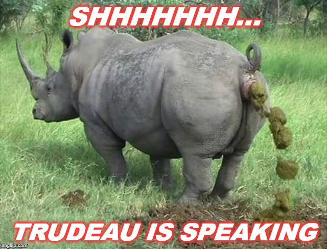 Speech by Justin Trudeau | SHHHHHHH... TRUDEAU IS SPEAKING | image tagged in rino,justin trudeau,trudeau | made w/ Imgflip meme maker