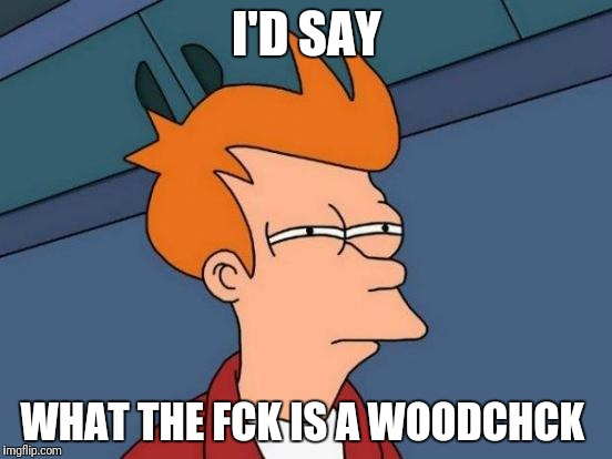 Futurama Fry Meme | I'D SAY WHAT THE FCK IS A WOODCHCK | image tagged in memes,futurama fry | made w/ Imgflip meme maker