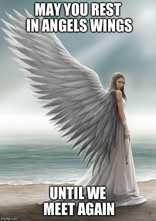 Mourning | MAY YOU REST IN ANGELS WINGS UNTIL WE MEET AGAIN | image tagged in grief | made w/ Imgflip meme maker