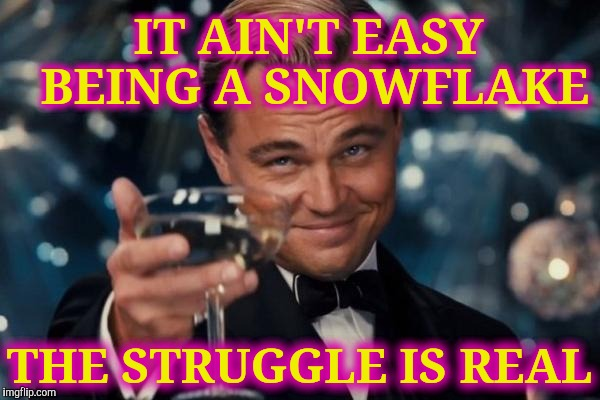 Leonardo Dicaprio Cheers Meme | IT AIN'T EASY BEING A SNOWFLAKE THE STRUGGLE IS REAL | image tagged in memes,leonardo dicaprio cheers | made w/ Imgflip meme maker