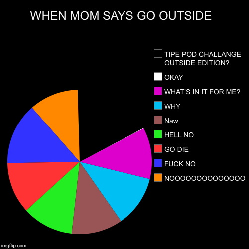 WHEN MOM SAYS GO OUTSIDE  | NOOOOOOOOOOOOOO, F**K NO, GO DIE, HELL NO, Naw, WHY, WHAT'S IN IT FOR ME?, OKAY, TIPE POD CHALLANGE OUTSIDE EDIT | image tagged in funny,pie charts | made w/ Imgflip pie chart maker