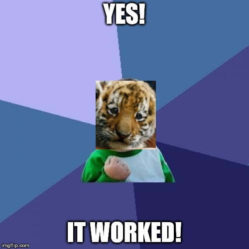 Success Kid Meme | YES! IT WORKED! | image tagged in memes,success kid | made w/ Imgflip meme maker