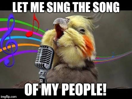 Let me sing the song of my people | LET ME SING THE SONG OF MY PEOPLE! | image tagged in funny bird,let me sing | made w/ Imgflip meme maker