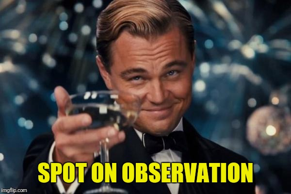Leonardo Dicaprio Cheers Meme | SPOT ON OBSERVATION | image tagged in memes,leonardo dicaprio cheers | made w/ Imgflip meme maker