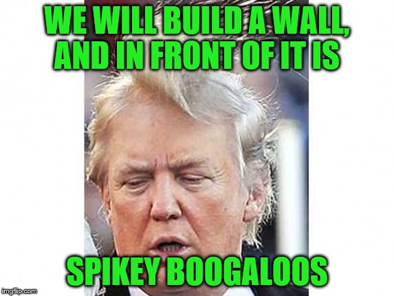 WE WILL BUILD A WALL, AND IN FRONT OF IT IS SPIKEY BOOGALOOS | made w/ Imgflip meme maker