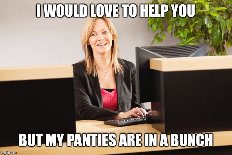 I WOULD LOVE TO HELP YOU BUT MY PANTIES ARE IN A BUNCH | made w/ Imgflip meme maker