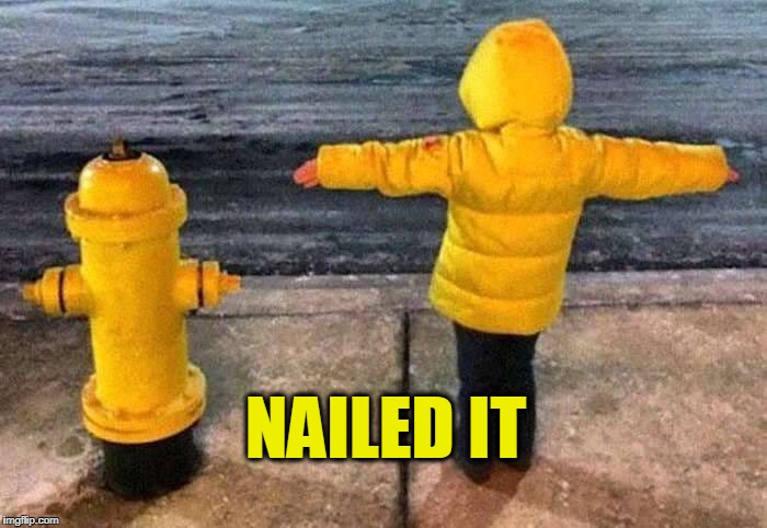 Fire-hydrant  | NAILED IT | image tagged in nailed it | made w/ Imgflip meme maker