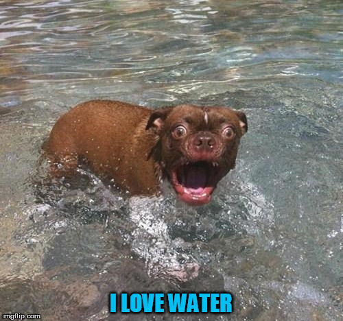 I LOVE WATER | made w/ Imgflip meme maker