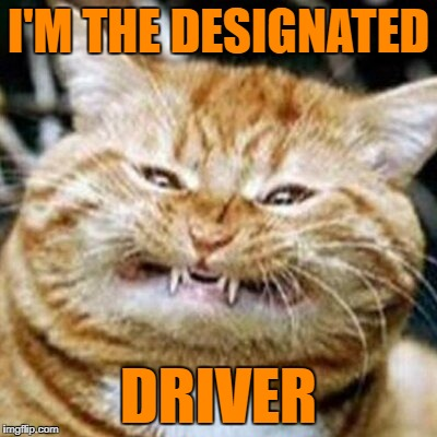 I'M THE DESIGNATED DRIVER | made w/ Imgflip meme maker