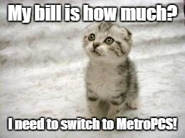 Sad Cat | My bill is how much? I need to switch to MetroPCS! | image tagged in memes,sad cat | made w/ Imgflip meme maker