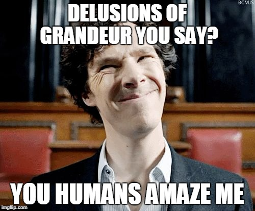 Delusions of grandeur??? | DELUSIONS OF GRANDEUR YOU SAY? YOU HUMANS AMAZE ME | image tagged in sherlock,delusional | made w/ Imgflip meme maker