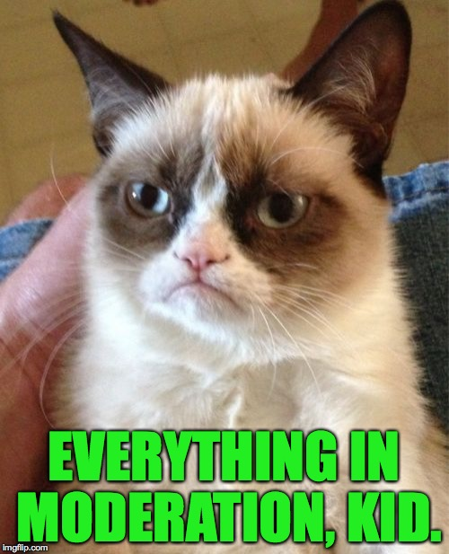 Grumpy Cat Meme | EVERYTHING IN MODERATION, KID. | image tagged in memes,grumpy cat | made w/ Imgflip meme maker