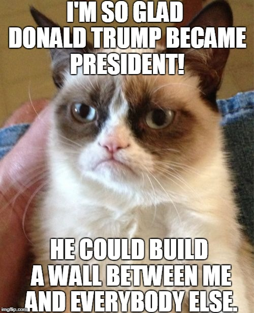 Grumpy Cat really hates everyone. Except for Donald Trump, which she will hate until he builds the wall. | I'M SO GLAD DONALD TRUMP BECAME PRESIDENT! HE COULD BUILD A WALL BETWEEN ME AND EVERYBODY ELSE. | image tagged in memes,grumpy cat | made w/ Imgflip meme maker