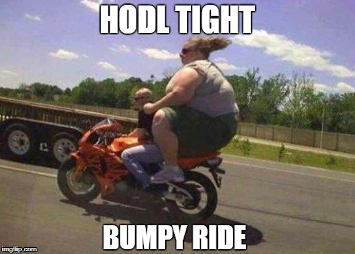 Hodl tight | HODL TIGHT BUMPY RIDE | image tagged in hodl,crypto | made w/ Imgflip meme maker