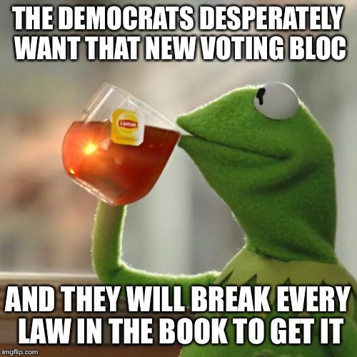 But Thats None Of My Business Meme | THE DEMOCRATS DESPERATELY WANT THAT NEW VOTING BLOC AND THEY WILL BREAK EVERY LAW IN THE BOOK TO GET IT | image tagged in memes,but thats none of my business,kermit the frog | made w/ Imgflip meme maker