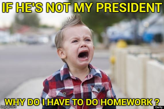 Mutant Spawn of the Snowflakes | IF HE'S NOT MY PRESIDENT WHY DO I HAVE TO DO HOMEWORK ? | image tagged in crying kid,not my president,not my problem,country,damn you | made w/ Imgflip meme maker