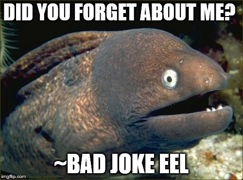 DID YOU FORGET ABOUT ME? ~BAD JOKE EEL | made w/ Imgflip meme maker