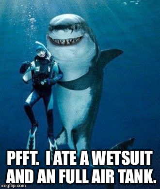 Shark Buddy | PFFT.  I ATE A WETSUIT AND AN FULL AIR TANK. | image tagged in shark buddy | made w/ Imgflip meme maker