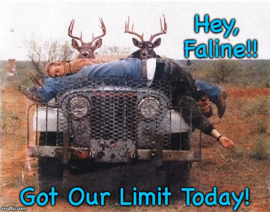 Buck Hunters  | Hey, Faline!! Got Our Limit Today! | image tagged in bagged the limit | made w/ Imgflip meme maker