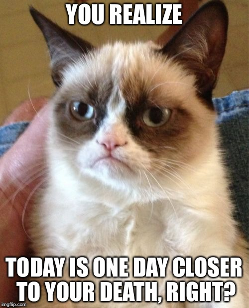 Grumpy Cat Meme | YOU REALIZE TODAY IS ONE DAY CLOSER TO YOUR DEATH, RIGHT? | image tagged in memes,grumpy cat | made w/ Imgflip meme maker