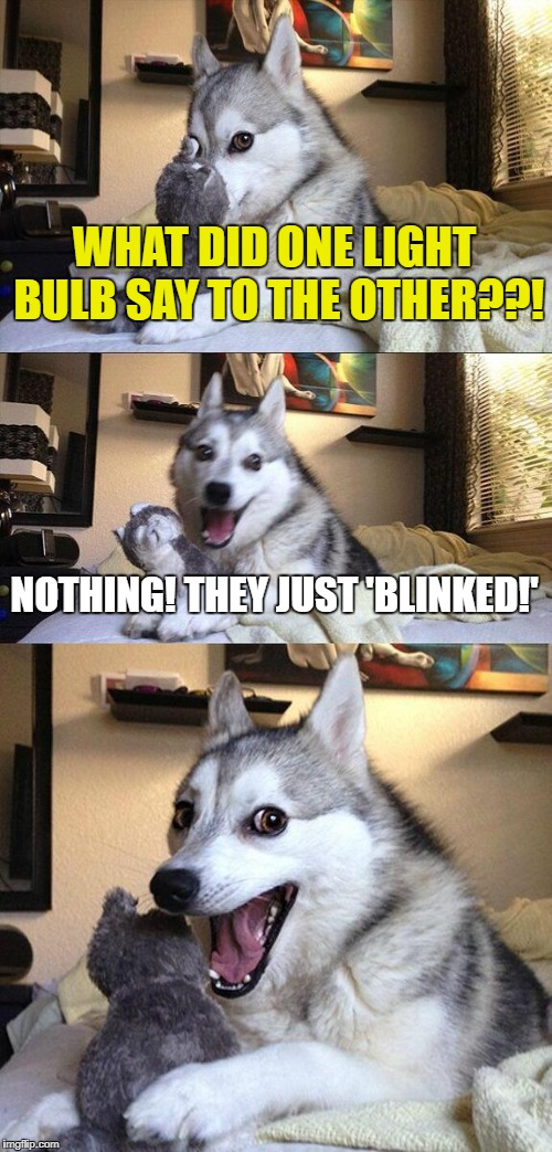 Bad Pun Dog Meme | WHAT DID ONE LIGHT BULB SAY TO THE OTHER??! NOTHING! THEY JUST 'BLINKED!' | image tagged in memes,bad pun dog | made w/ Imgflip meme maker