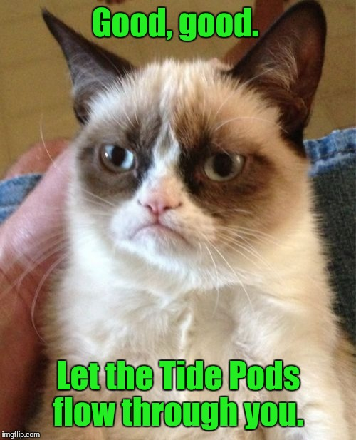 Grumpy Cat Meme | Good, good. Let the Tide Pods flow through you. | image tagged in memes,grumpy cat | made w/ Imgflip meme maker